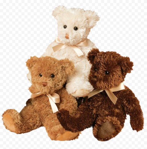 Stuffed Teddy Bear PNG Photos
