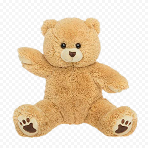 Stuffed Teddy Bear PNG Image