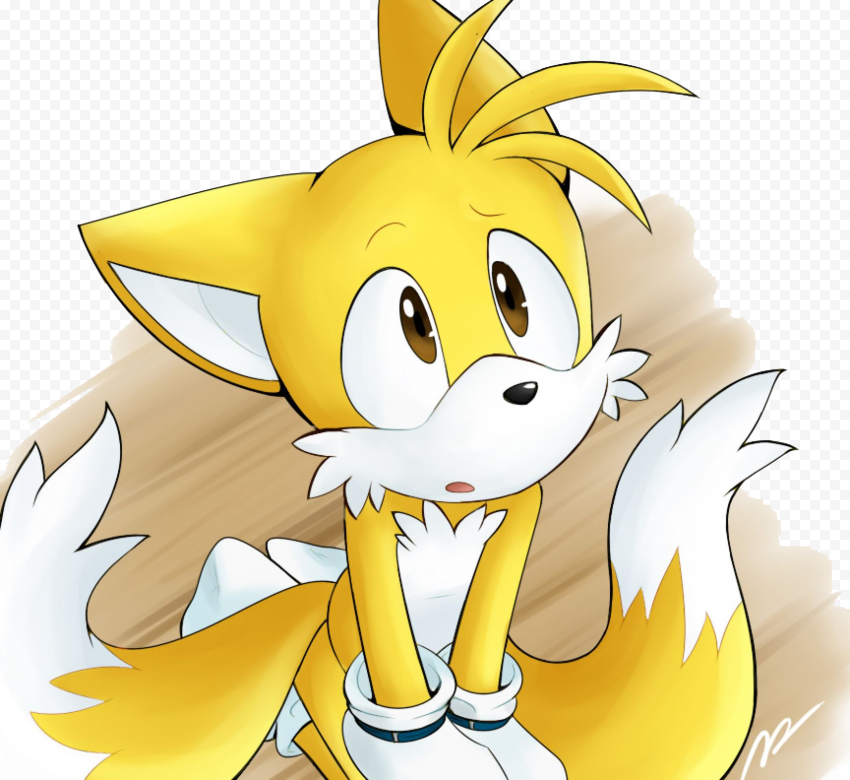 Tails PNG Transparent  FREE DOWNLOAD