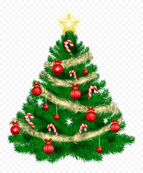fir pine family christmas decoration for christmas 11