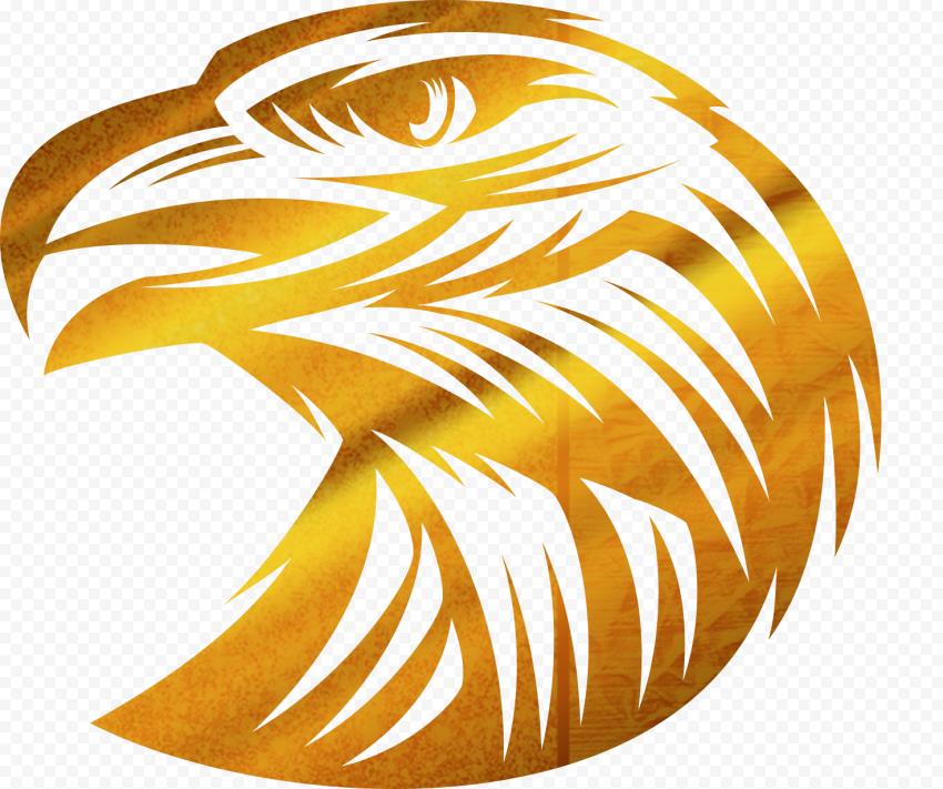 gold bird head illustration, Bald Eagle, Golden Eagle, food, golden Frame, animals