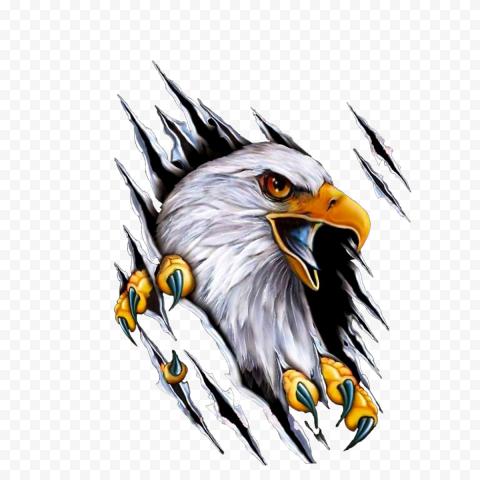 Car Mile High Harley Davidson Motorcycle Decal, eagle, bald eagle painting, animals, pin, bald Eagle
